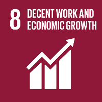 SDG 8 Decent Work & Economic Growth