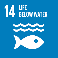 SDG14 Life Below Water