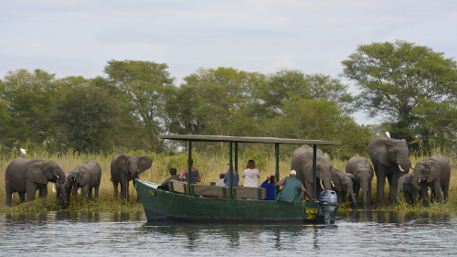 Local tourism - Morning boat safari Malawi