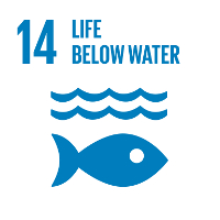 sustainable development goals #14 Life Below Water #SDGs