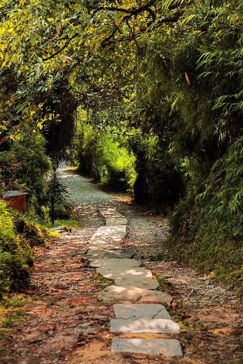 Tiger Mountain Pokhara Lodge, Nepal - Path to Rooms