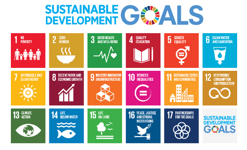 The Un sustainable develop,ment goals