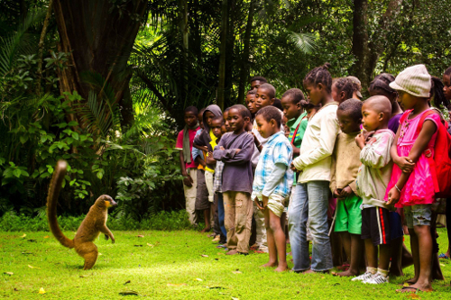 SEED kids conservation club - Nahampoana wildlife reserve