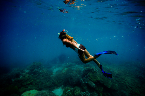 Snorkel the world's first private protected marine area