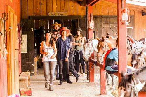 Linden Tree Retreat & Ranch Barn