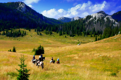 Linden tree retreat & ranch in velebit national park, a unesco biosphere reserve