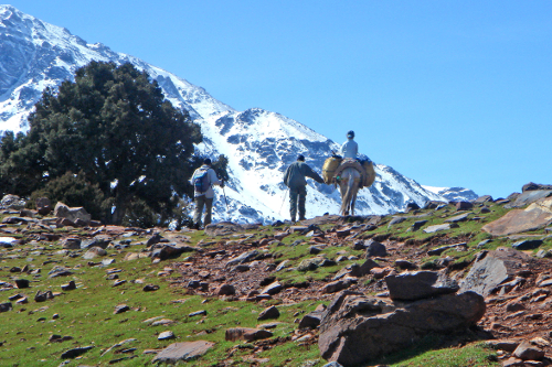 Trekking - Kasbah du Toubkal-
