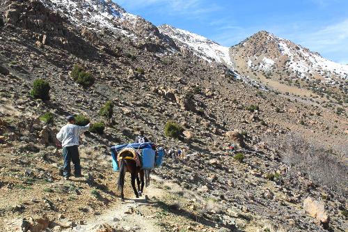 Trekking Kasbah du Toubkal