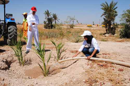 Education For All - Tree Planting