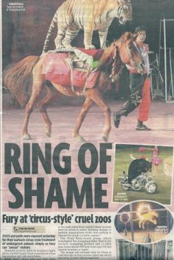 Ring of Shame.jpg