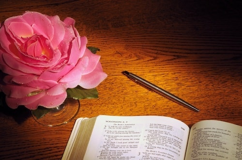 rose-bible-pen-min.jpg