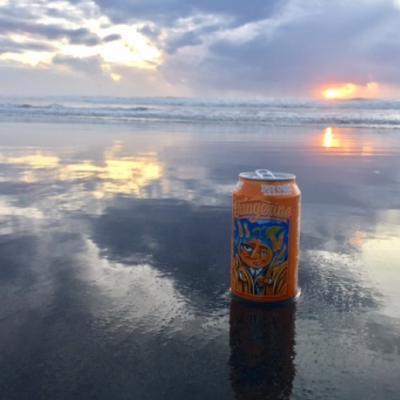 Lost Coast Brewing