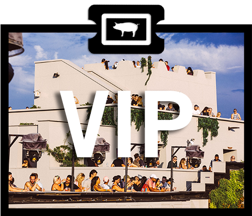 Ticket type VIP.png