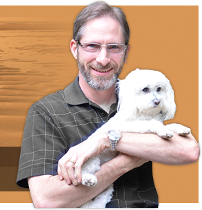Holistic Vet's Raw Food Diet Recommendation