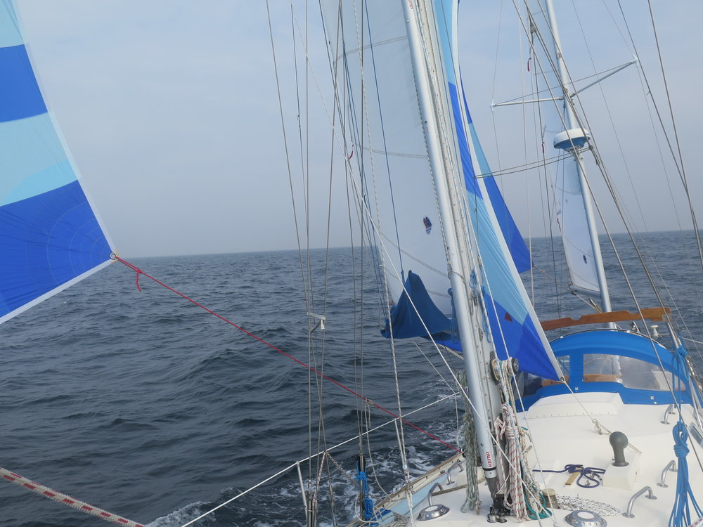 Spinnakers up, onboard.JPG