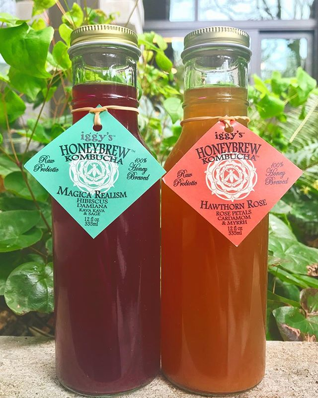 Iggy's Honeybrew Kombucha now available at Royal Drummer! @iggysliveculture 🌺🌹🐝🍯 #ballard #kombucha #culture #drumbeat #hawthornrose #magicarealism