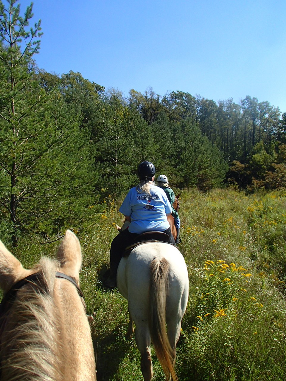 wrangler weekend trail riding 2013.jpg