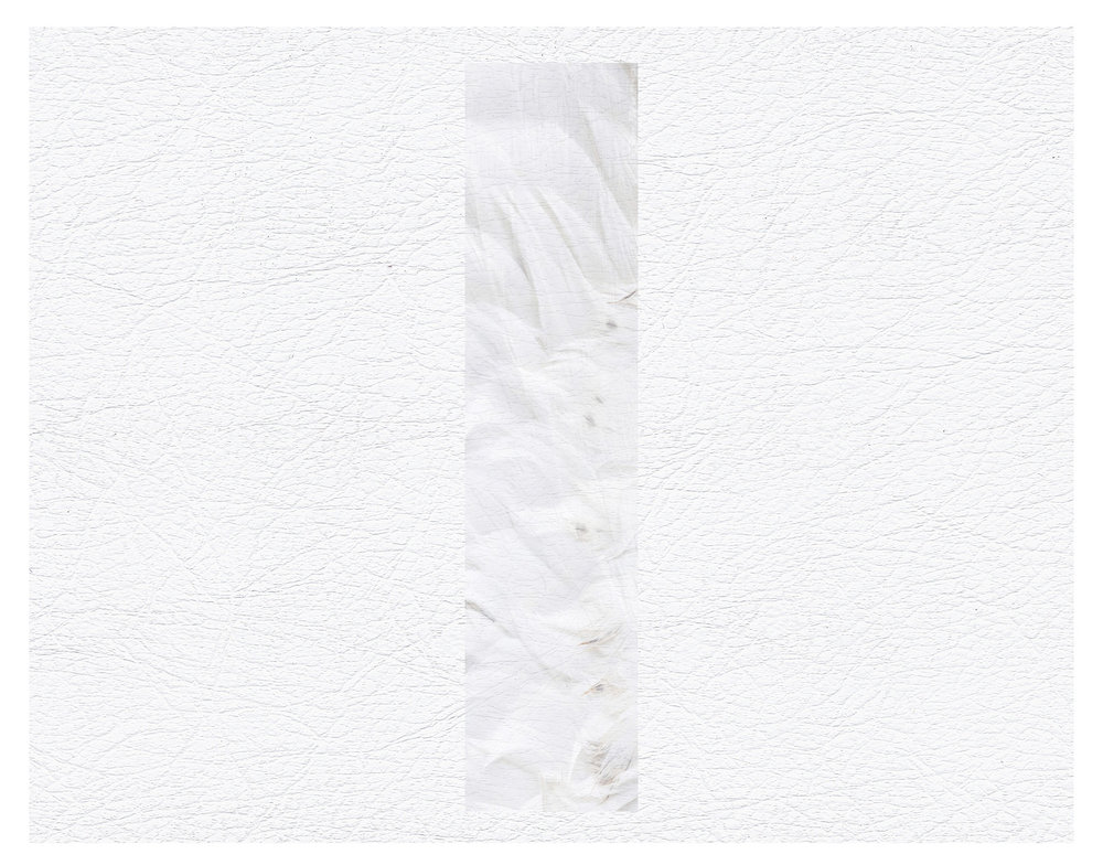 'Plinth Feather [White]' Poster Design