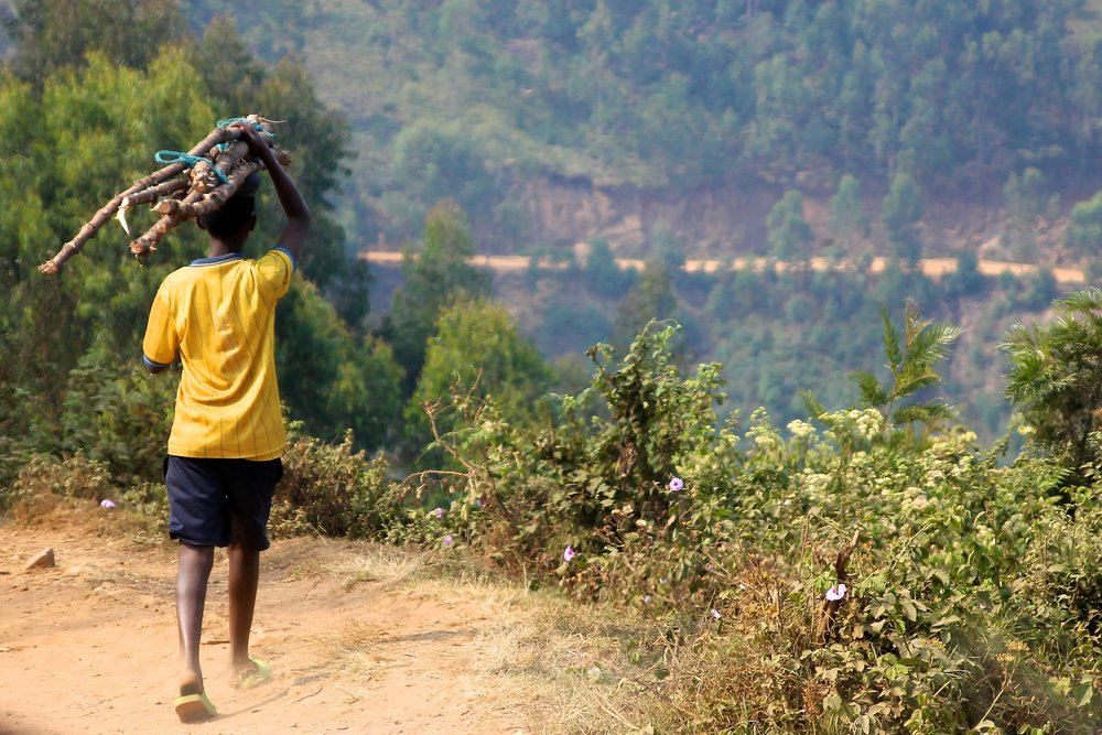 refugee boy carrying firewood on his head