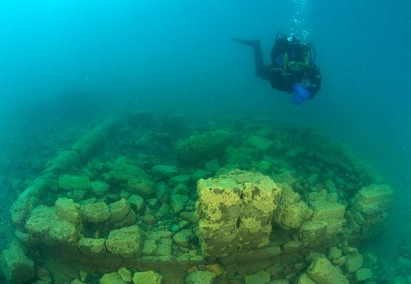 Diving Main.jpg