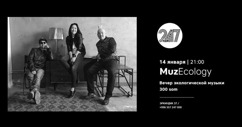 Studio 247