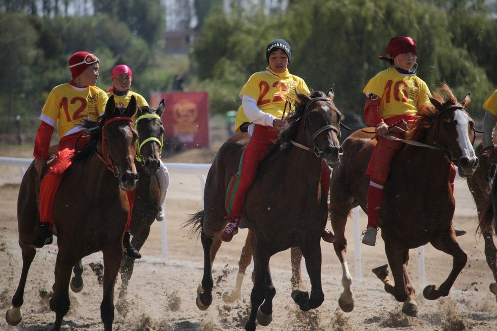 - Race horses of two-year-old horses to a distance of 11 km. The winner is the one, who comes first.