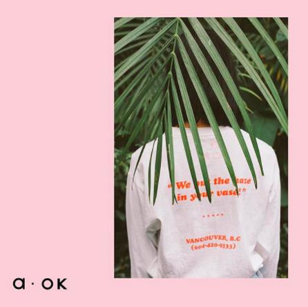 Studio A-OK