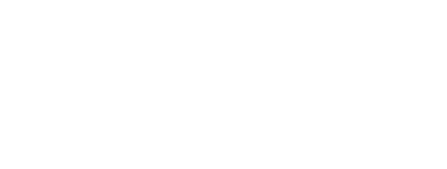 Outsider Consulting, LLC