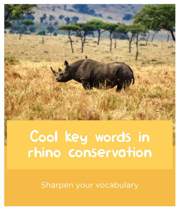 Rhino-keywords.jpg