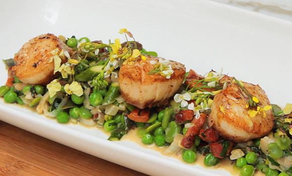 Seared Sea Scallops over Spring Succotash — The City Kitchen
