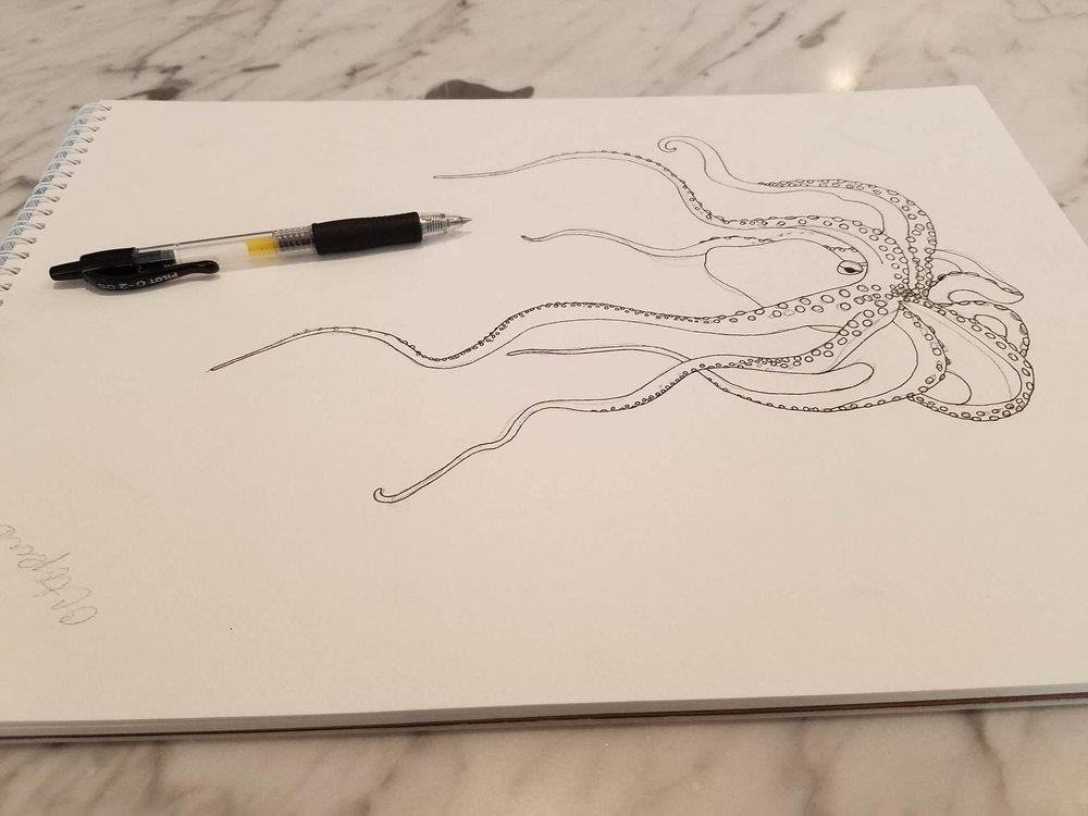 Octopus Phase 1