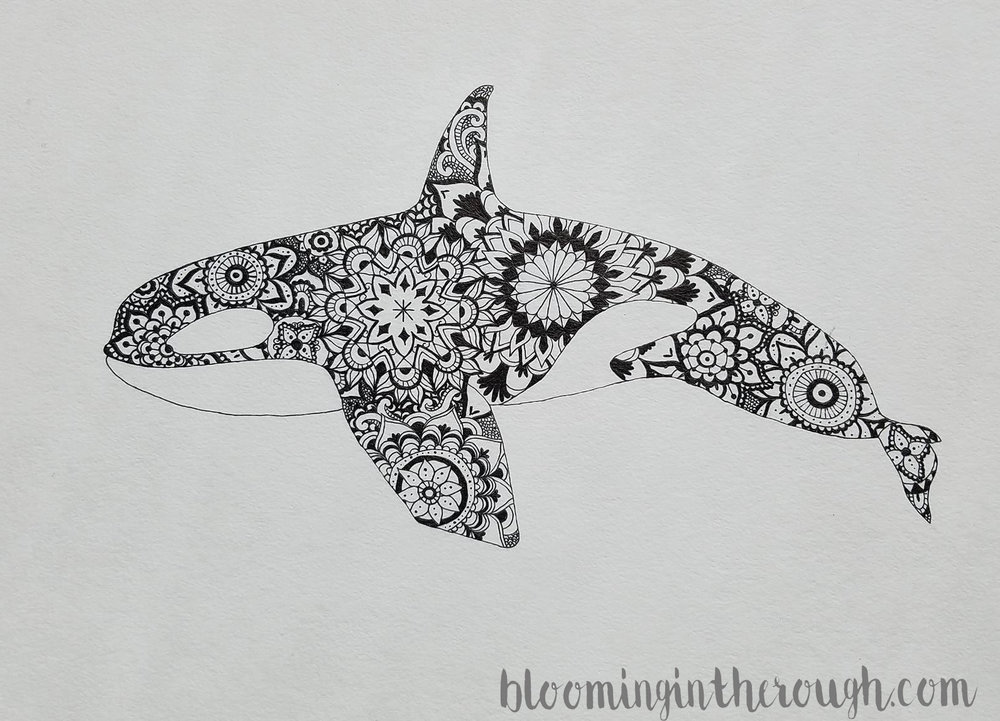 Orca mandala design by Hannah Ferris.  More sea creatures on the website.