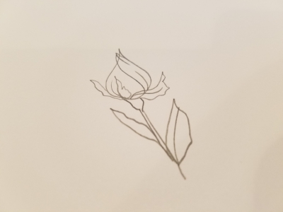 Easy rose bud tutorial for beginners.  If you like it, click the link for more tutorials on how to draw flowers!  And if you want to take your art to the next level and get it on some digital products, then check out my courses on how to do just that!