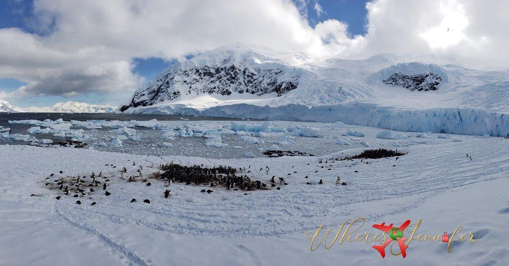 antarctica wheresjennifer.jpg