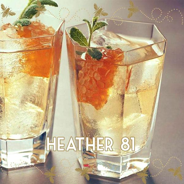 Heather81-GreyGoose.jpg