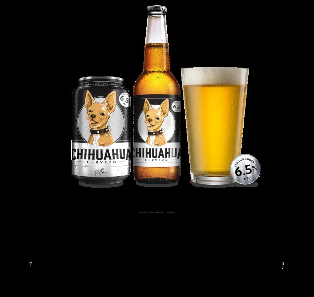 Chihuahua-Image-Rico-01.png