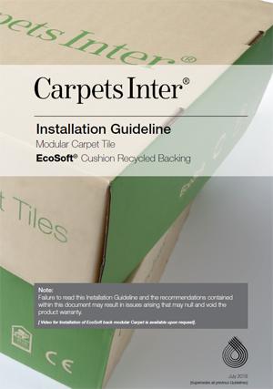 EcoSoft Installation Guidelines