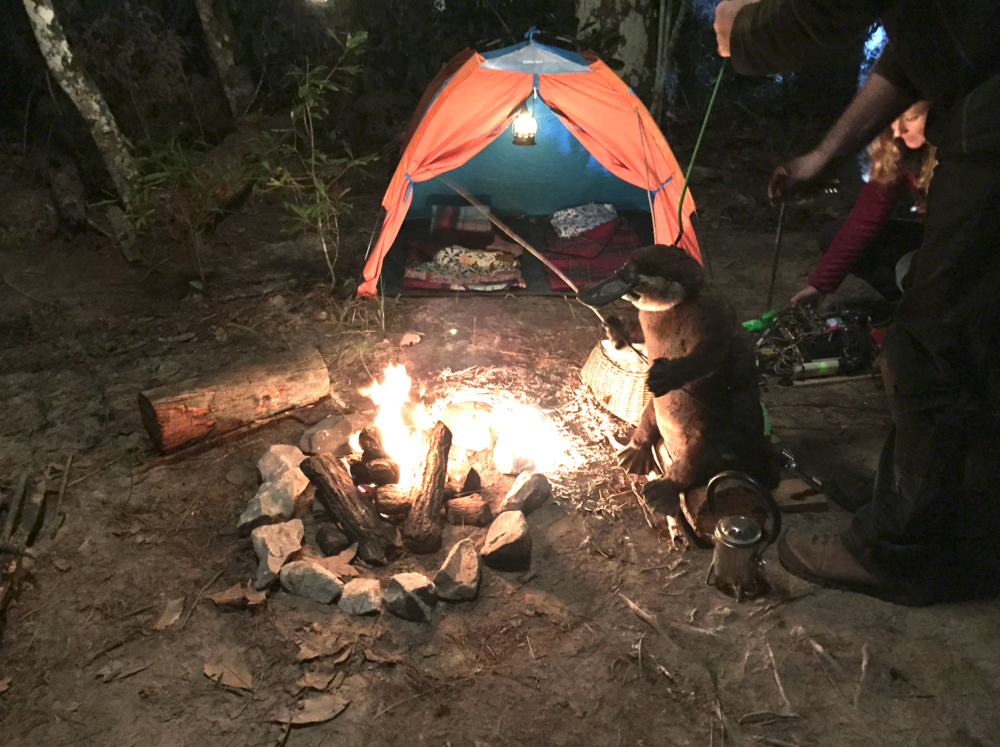 "BTS on set for a ""campfire bonus scene."
