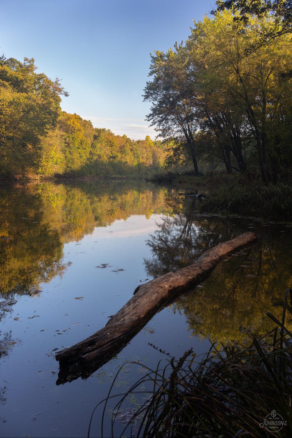 Backbone State Park, IA