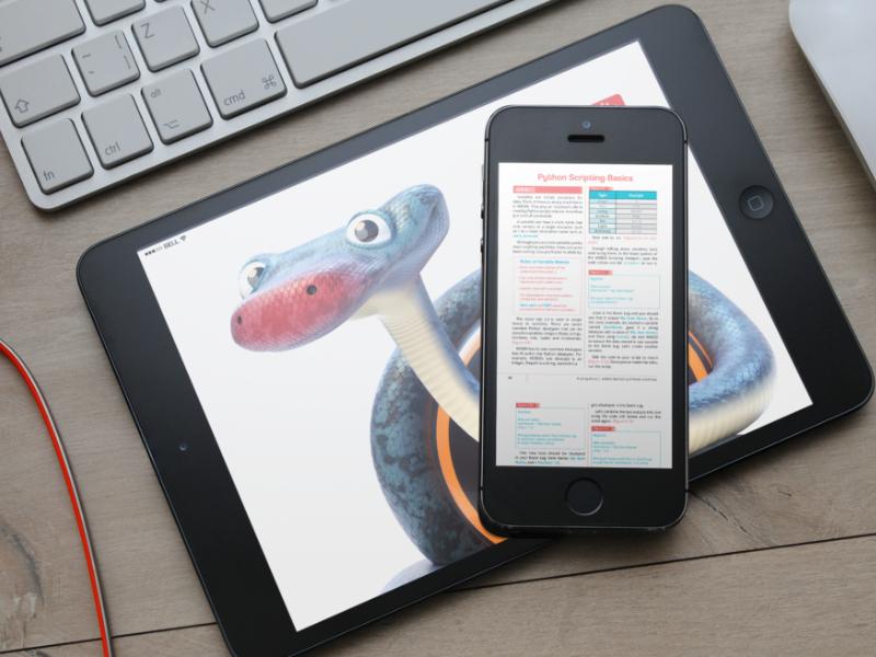 python scripting.png
