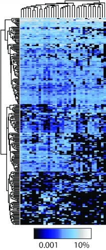 Heatmap of 16S rRNA data showing variation in Healthy Adult Microbiota