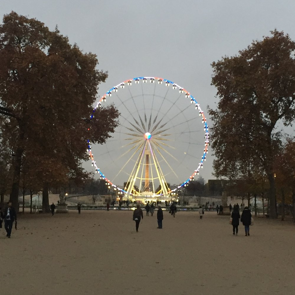 The Ferris wheel in Paris!