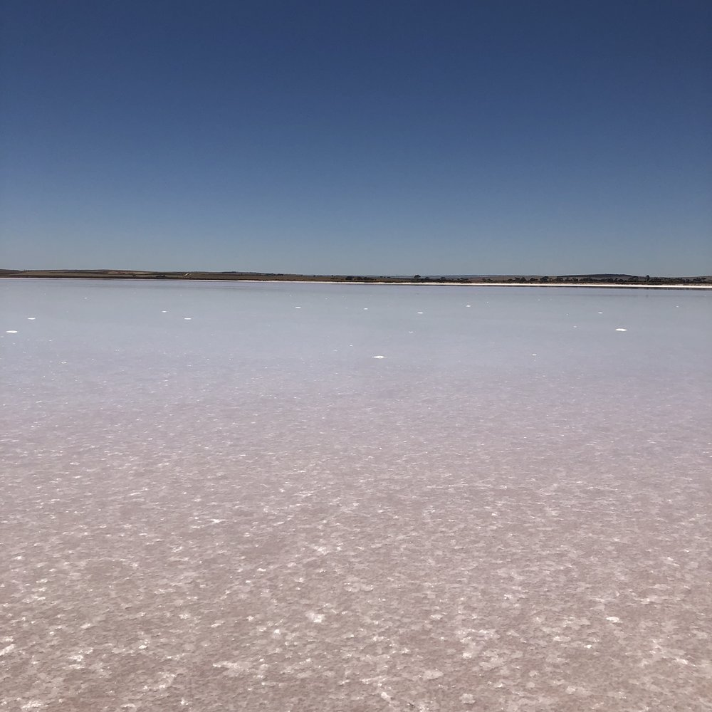 Photo taken by me of lake Bumbunga. I guess if you look closely you can see a pale pink color, if you squint, like really hard. So disappointed.