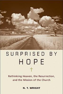 surprised by hope.jpg