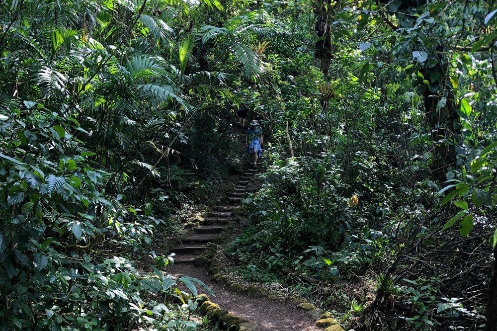 Day 2: Mombacho Volcano Hike