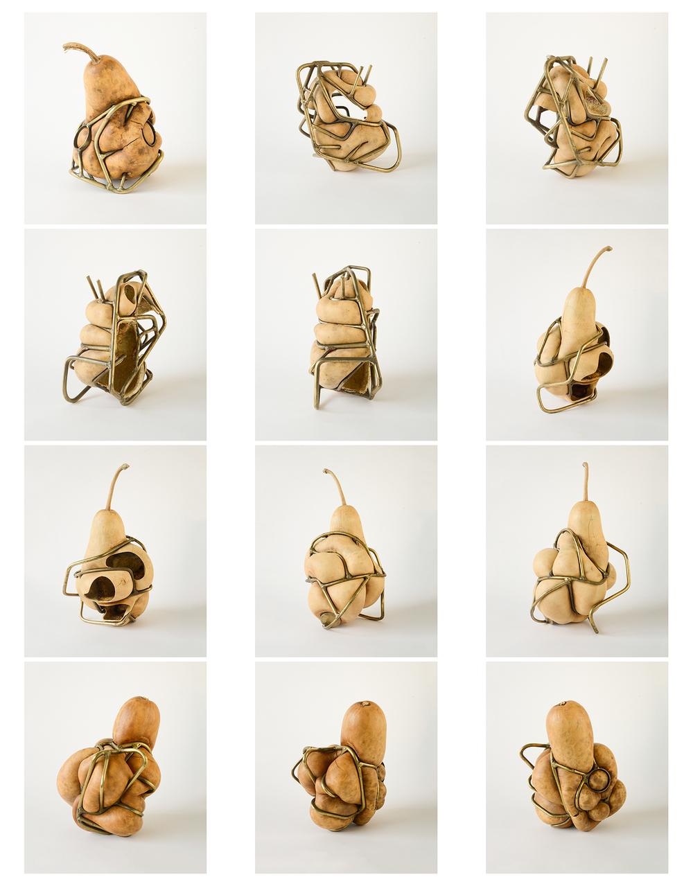 gourdcontactsheet.jpg