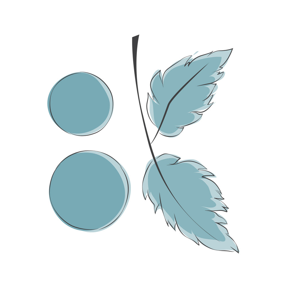 Botanical Kitchen (Logo Study)