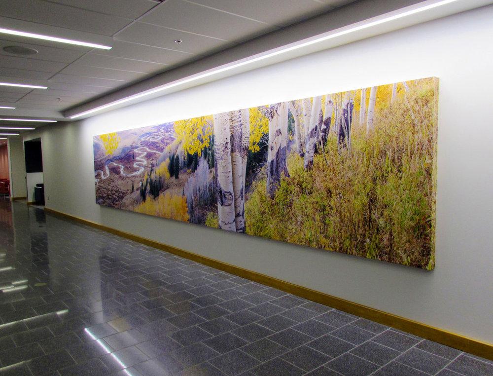 5x4 - Artist Canvas - Autumn Forest 1.jpg