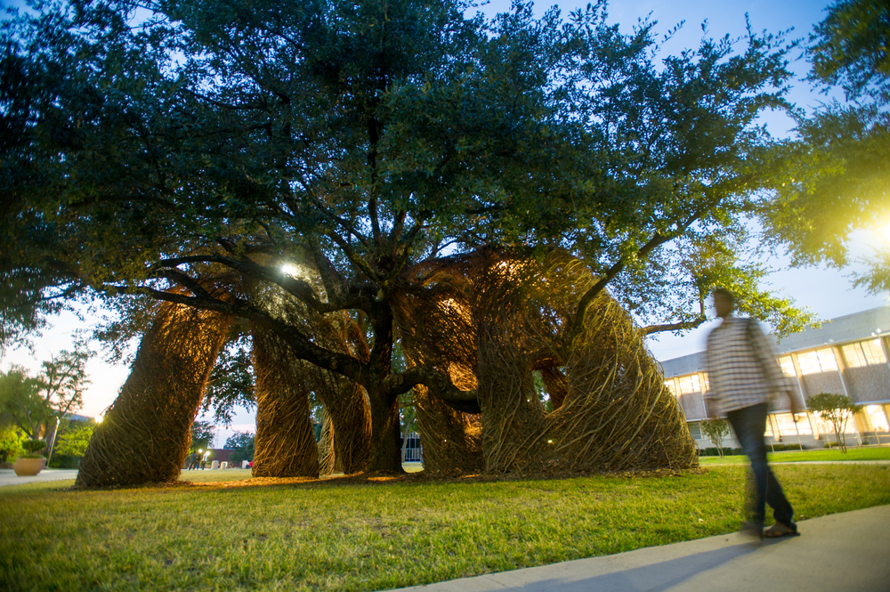 patrick dougherty sculpture