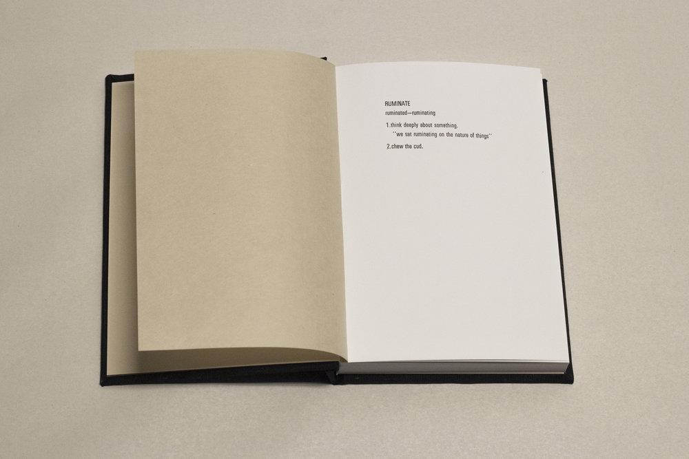 Rumination Diaries3.jpg